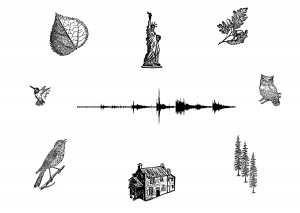 Brooklyn Acoustic Ecology Festival
